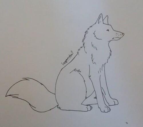 Dessin de loups