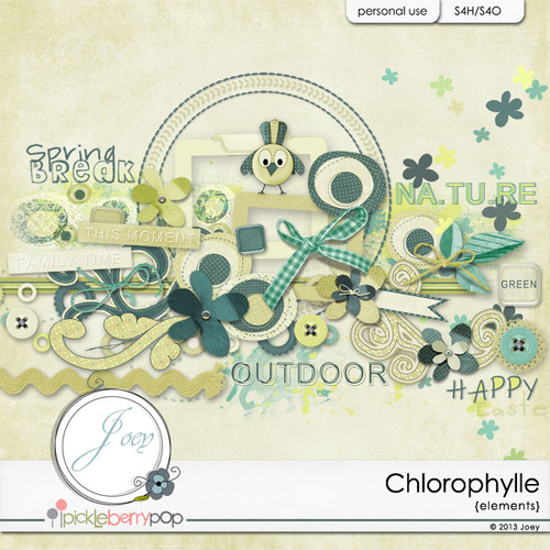 CHLOROPHYLLE de Joey