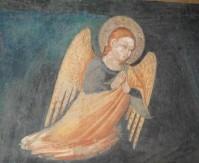 ange san damiano