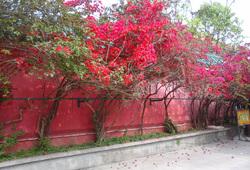 Site de Po Lin (Lanteau)