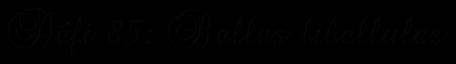 """Votre galerie mes zamours: Défi :""""Belles libellules"""""""