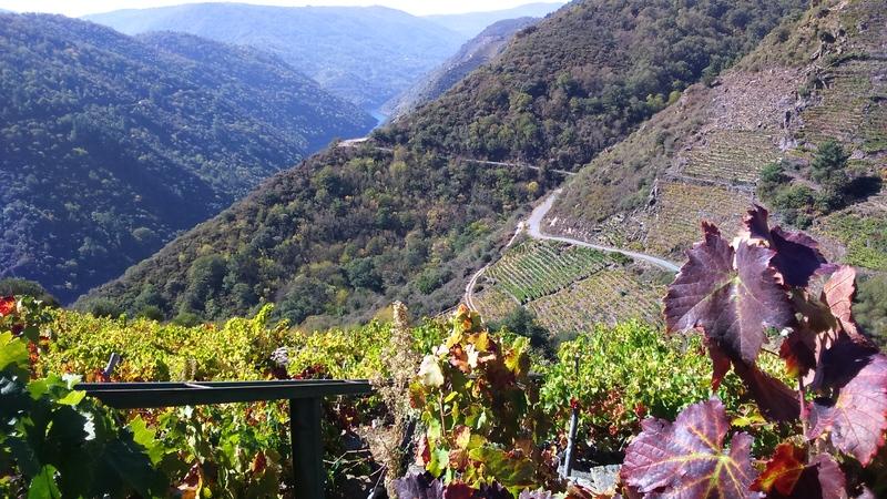 9 octobre Ribadéo Ourense