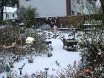 Première neige du 3 février 2012