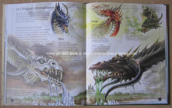 Dragons et autres maitres du rêve