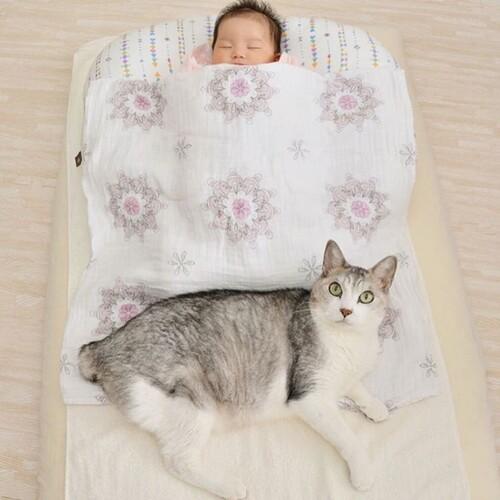 Elle aime le bébé de son humaine comme si c'était le sien...