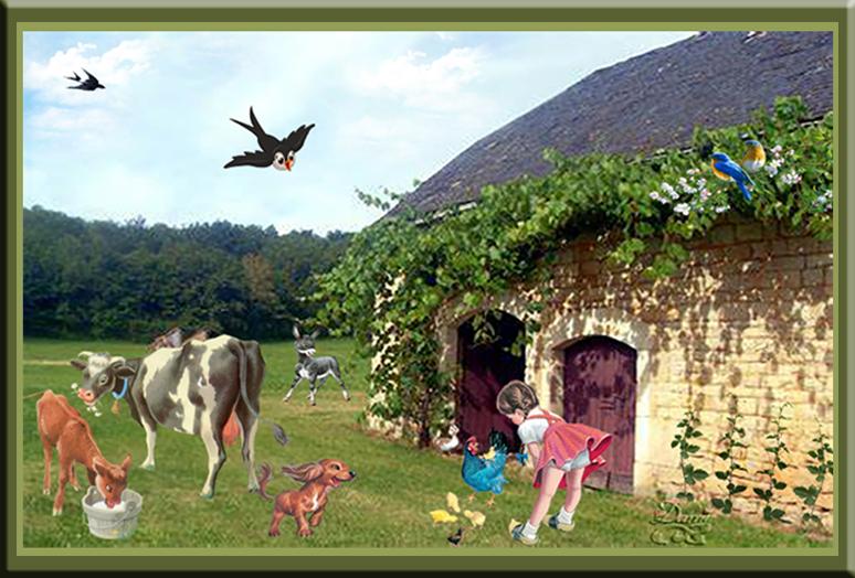 Vacances à la campagne..