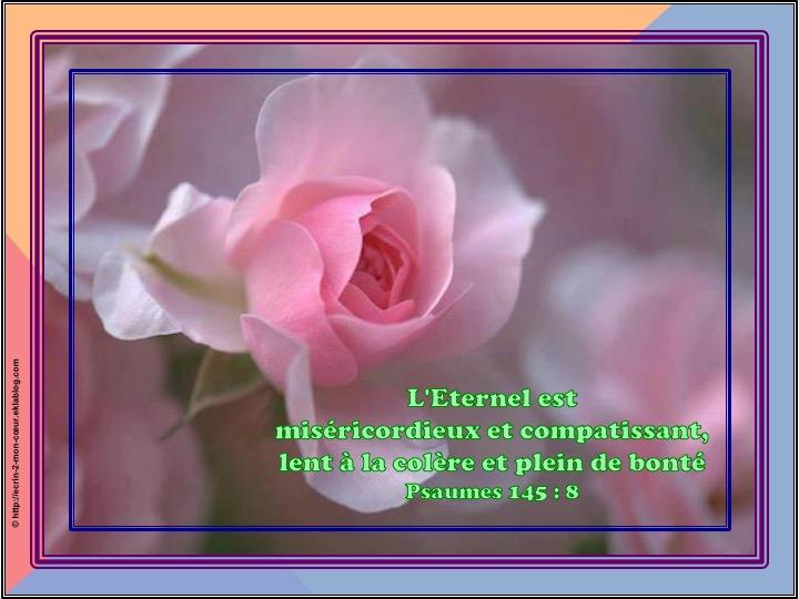 L'Eternel est miséricordieux - Psaumes 145 : 8