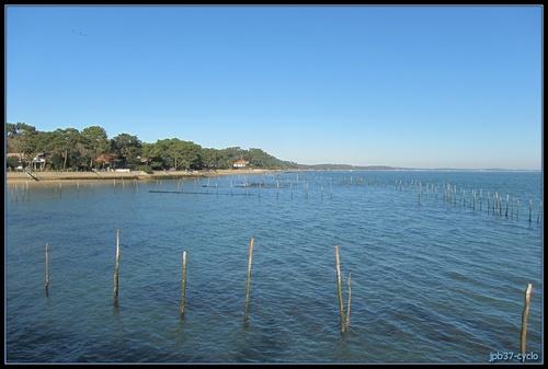 Autour du Bassin d'Arcahon - Téléthon 2013