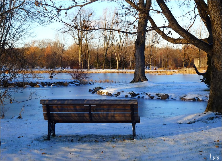 L'hiver s'installe (#2)