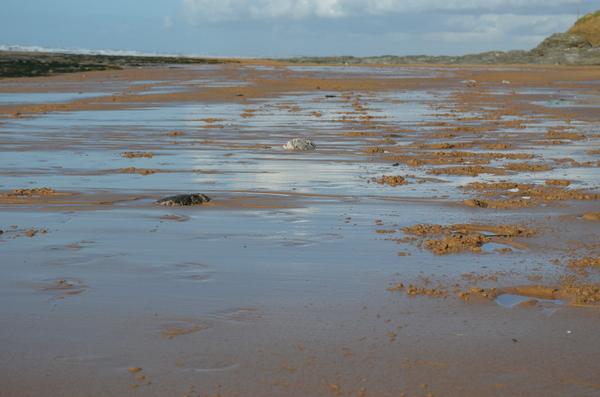 Elle est belle la Vendée !