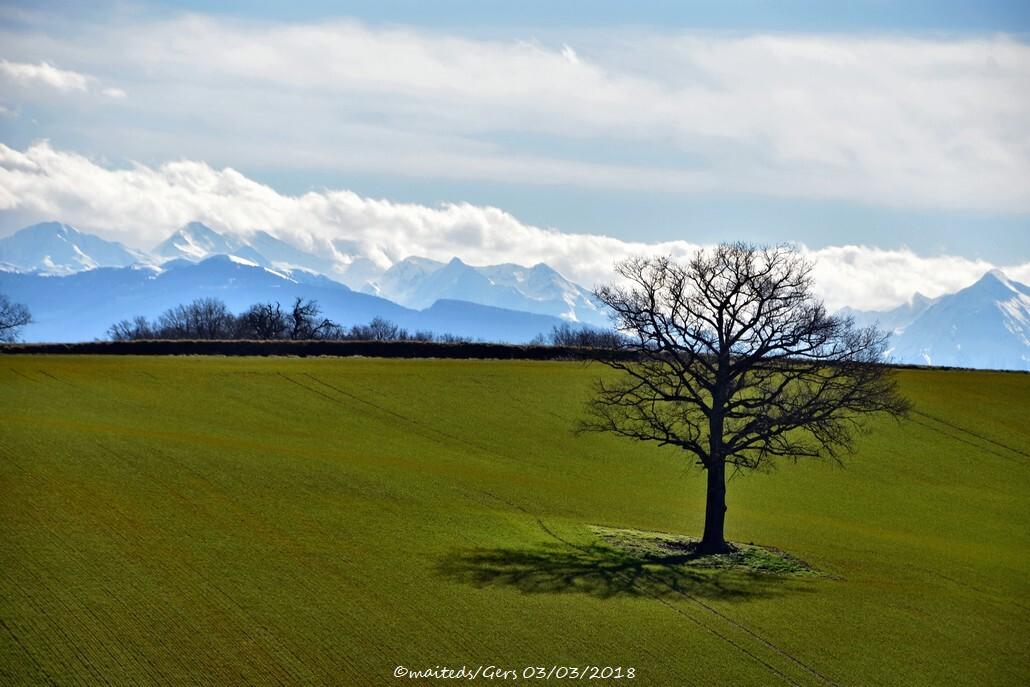 Paysage du Gers 03/03/2018 avec vue sur les Pyrénées