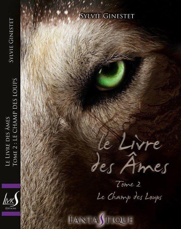 """Découvrez la couverture du tome 2 du """"Livre des âmes"""" de @SylvieGinestet @LivrS_Editions"""