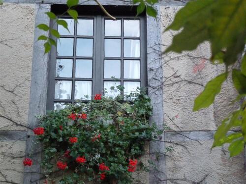 Encore des fenêtres