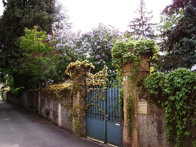 Ancy sur Moselle 2 mp1357 25 01 2011