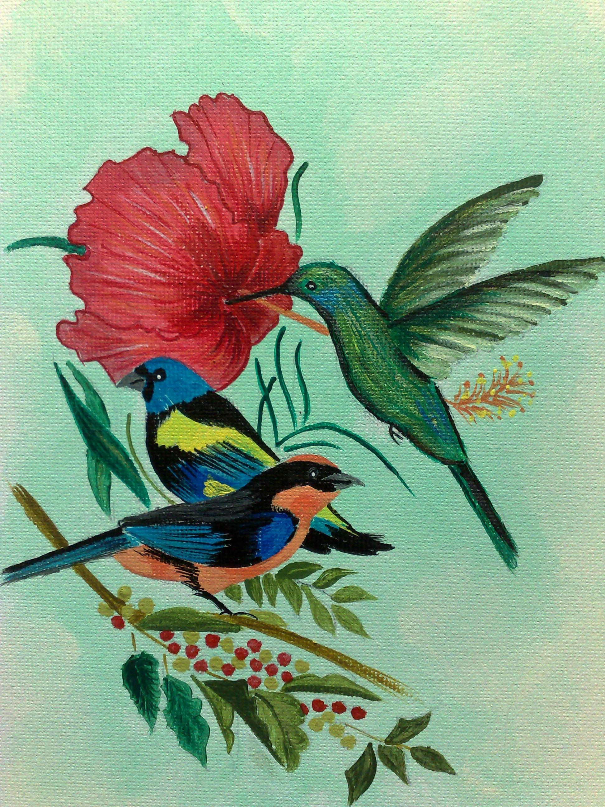 Colibri Hibiscus colibri et hibiscus - a mon meilleur ami