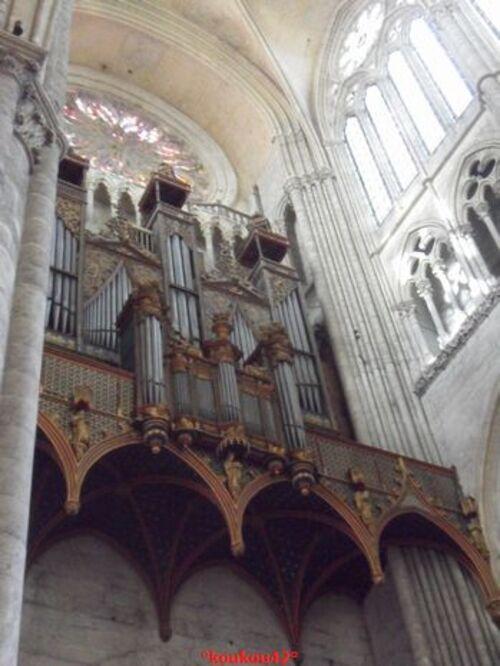 Echappée belle Amienoise. La cathédrale (2).