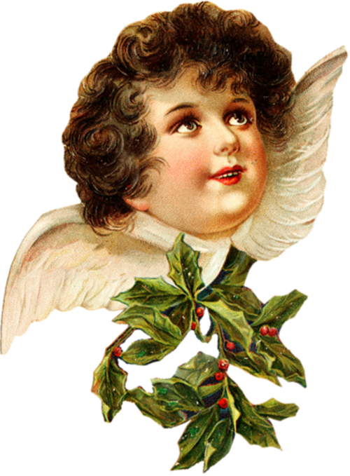 Ange Noël  ( vintage ) 2018