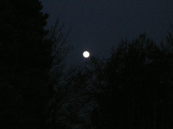 pleine-lune-03.jpg