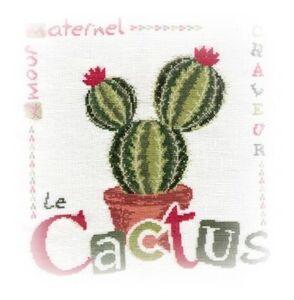 Le Cactus de Lilipoints fin