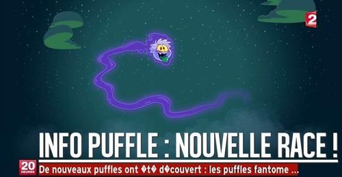 Petit Montage Puffle