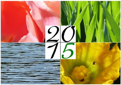 Mes voeux pour 2015