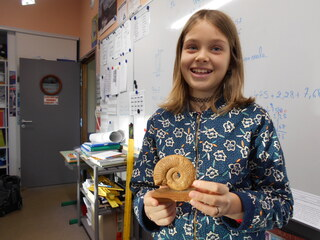Un fossile d'ammonite