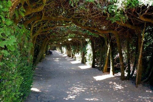 Le château de Hautefort: les jardins (n 2)