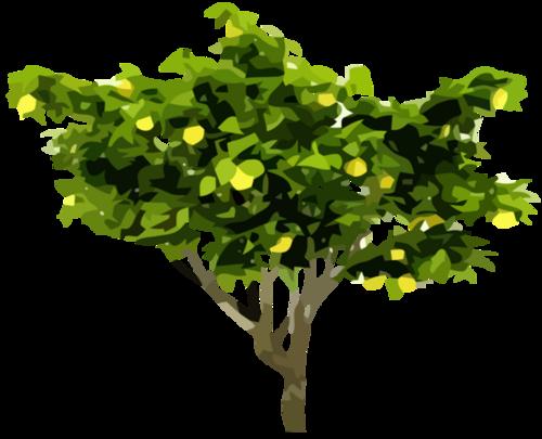Tubes arbres en png