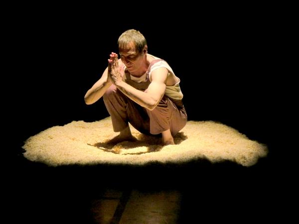 """""""L'Utopie des arbres""""un très beau spectacle qui a mêlé l'amour des arbres à l'invention poétique, bientôt au TGB"""