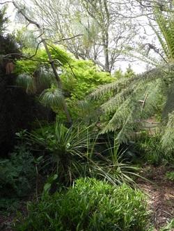 Le jardin du Goascaer
