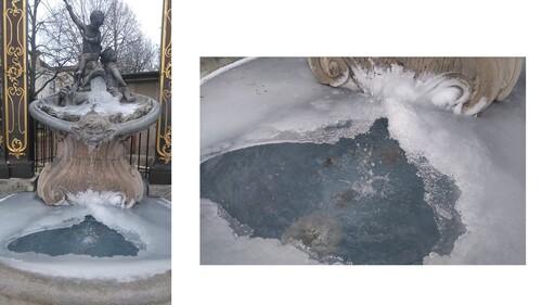 Quand la vie sourd encore sous la glace ...