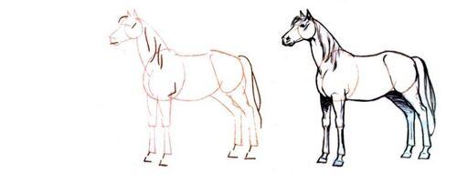 Dessin et peinture - vidéo 3088 : Comment dessiner le cheval, par l'exemple, avant de le peindre 1/2 ? - tous les tutos.