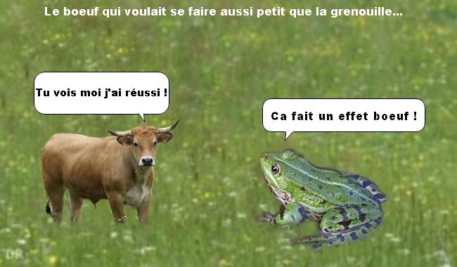 Le boeuf et la grenouille.