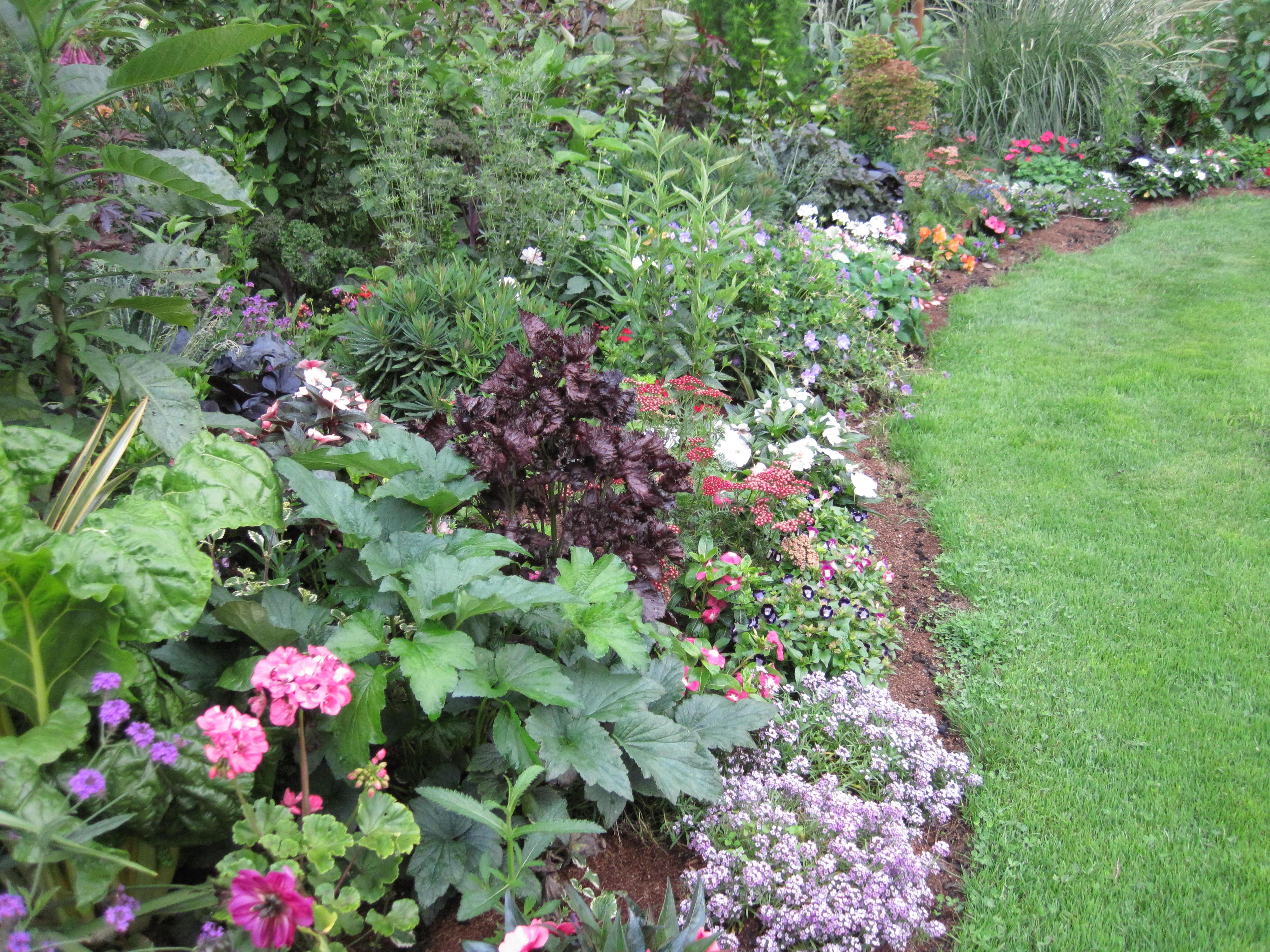 Jardin public de mimizan marier les h m rocalles d for Jardin de plante