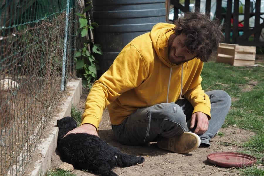 Une nouvelle habitante à bouclettes au Terrier... ♥