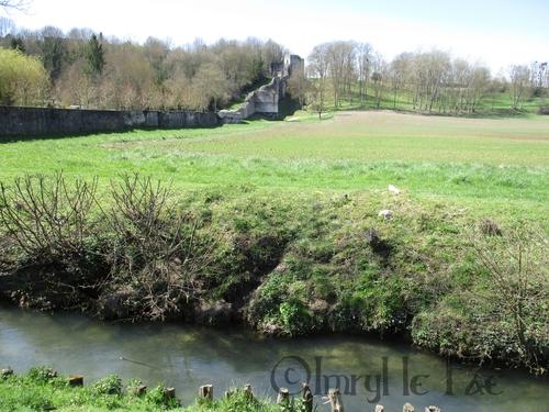 Le Durtein, la rivière qui coule au pied du Trou au Chat