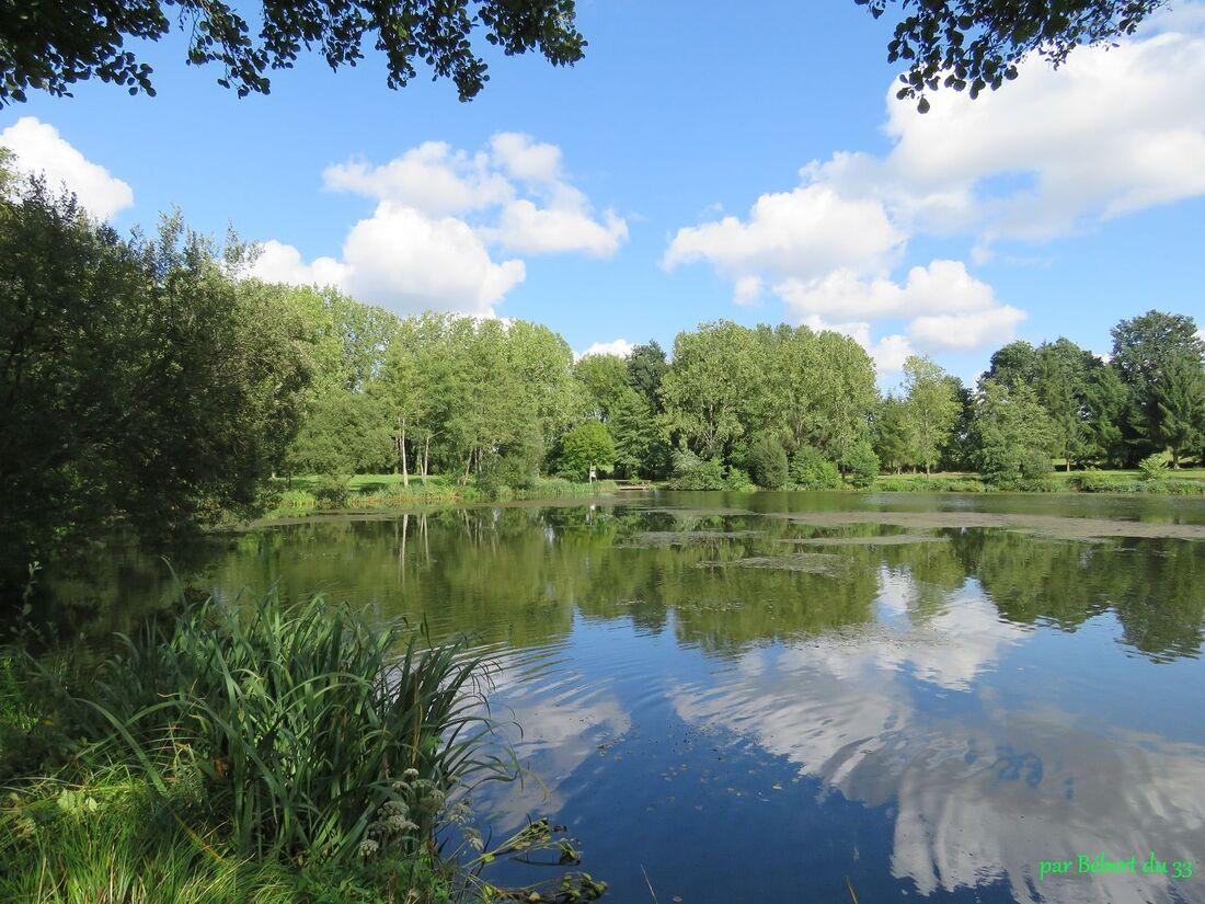 l'étang de Valvert (56)