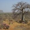 Mali Entre Gouina et Kayes
