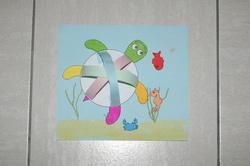 La tortue marine et ses amis