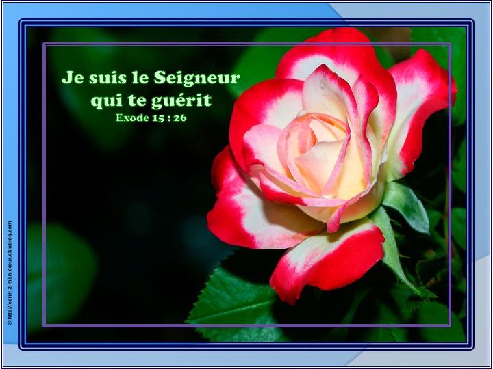 Je suis le Seigneur qui te guérit - Exode 15 : 26