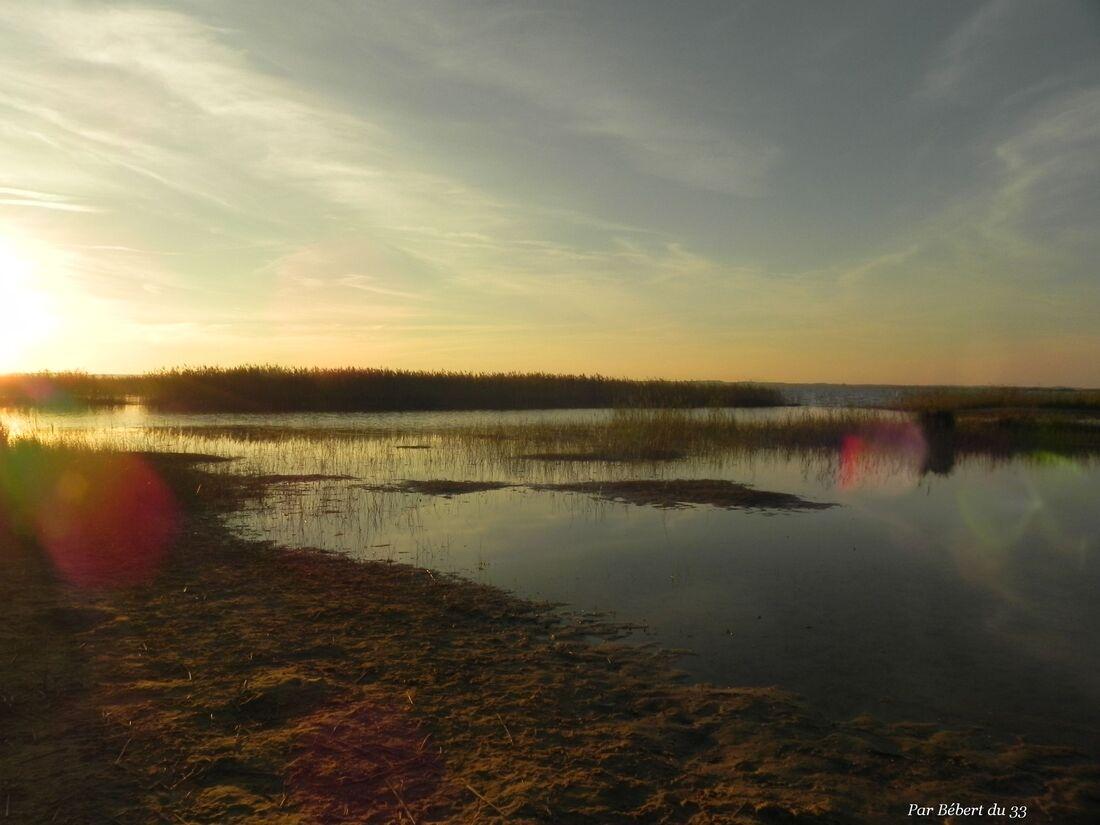 coucher de soleil au lac de Sanguinet
