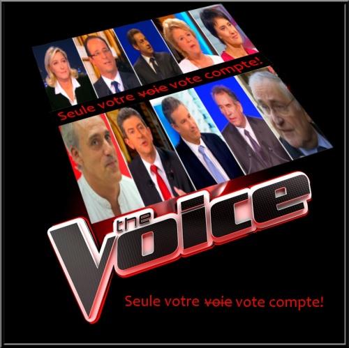 The voice, la seule voix qui compte