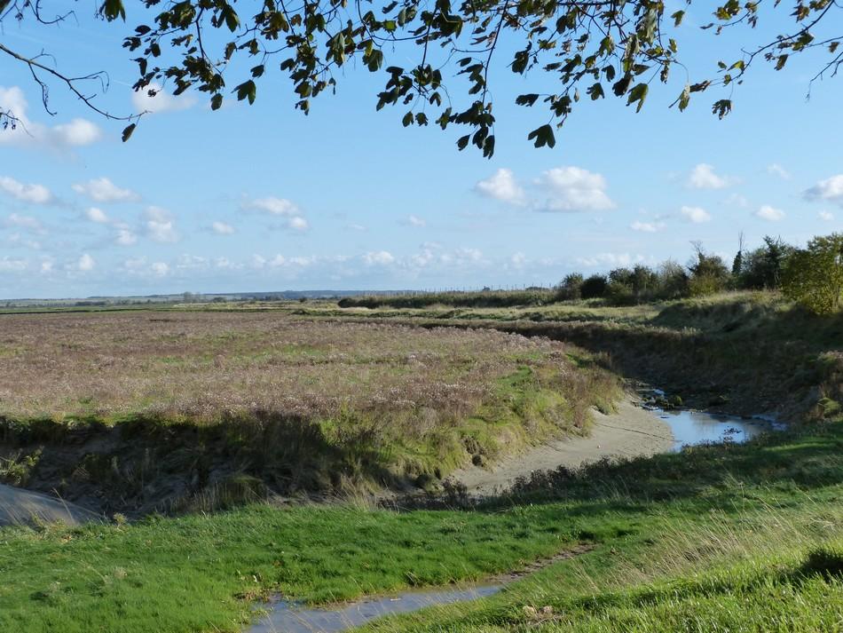 "Baie de Somme, balade vers le ""Feu"""