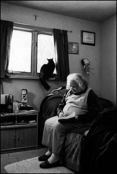 03 -  Des chats et des vieilles dames, portraits