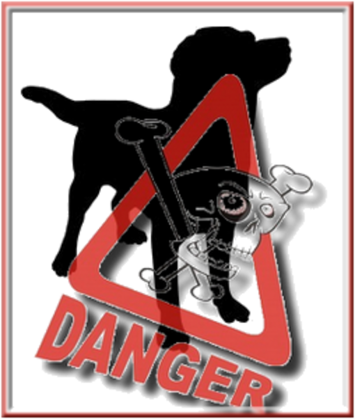 Alerte danger croquettes