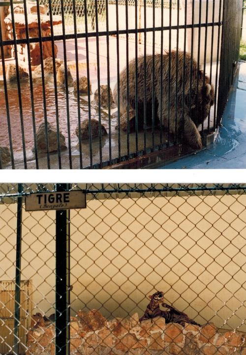 le Zoo Jean Richard d'Ermonville en Août 1988