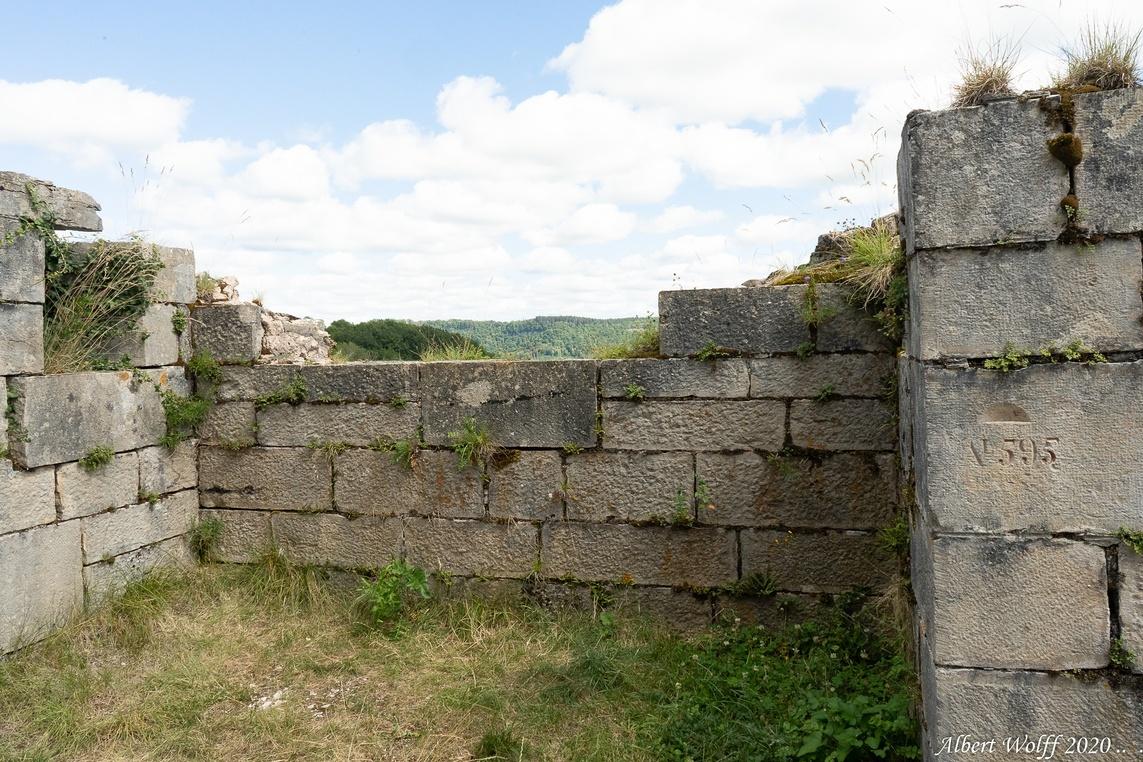 Salins les Bains et ses deux forts (Belin)