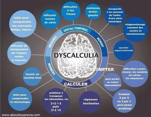 Mieux s'informer pour mieux comprendre : Disphasie, Dispraxie, Dislexie, Discalculie