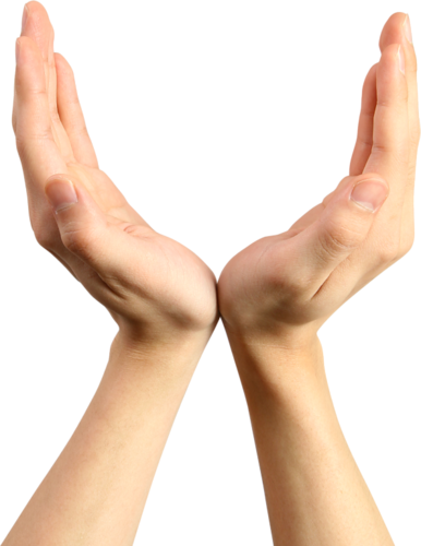 Mains de Femmes Série 1 (nouveau)