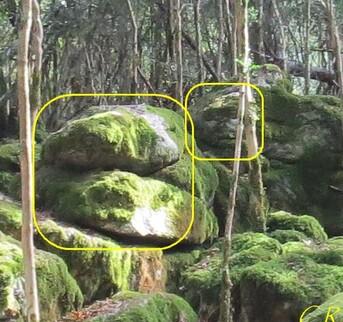Eau, arbres et rochers énigmatiques